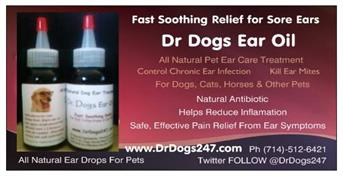 ear drops for dogs - ear drops for cats
